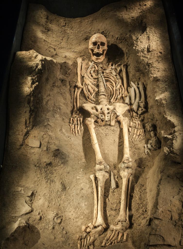 mondeval-scheletro-2