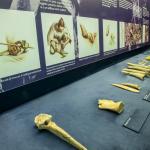 La sezione archeologica